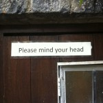Please mind your head at the RDI Summer School
