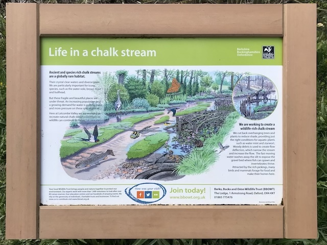 Life in a chalk stream - info panel at Letcombe Brook.